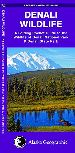 9781583551554: Denali Wildlife: A Folding Pocket Guide to the Wildlife of Denali National Park & Denali State Park (A Pocket Naturalist Guide)