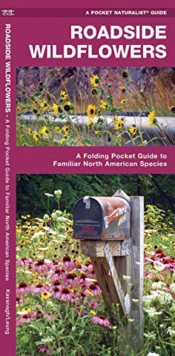 Roadside Wildflowers: A Folding Pocket Guide to: James Kavanagh