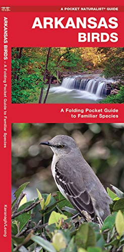 Arkansas Birds: A Folding Pocket Guide to: James Kavanagh