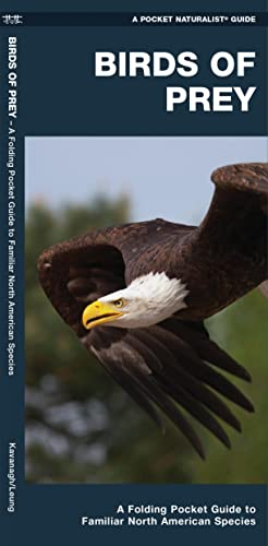 Birds of Prey: A Folding Pocket Guide to Familiar North American Species (Pocket Naturalist Guide ...