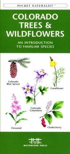 9781583552131: Colorado Trees & Wildflowers