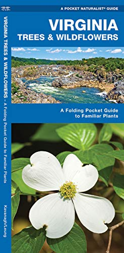 9781583552506: Virginia Trees & Wildflowers: A Folding Pocket Guide to Familiar Plants (A Pocket Naturalist Guide)