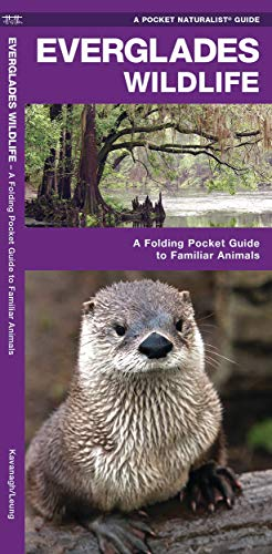 9781583552551: Everglades Wildlife: A Folding Pocket Guide to Familiar Species (A Pocket Naturalist Guide)