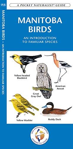 Manitoba Birds: A Folding Pocket Guide to Familiar Species (Pocket Naturalist Guide Series): ...