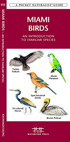 9781583553107: Miami Birds: A Folding Pocket Guide to Familiar Species (A Pocket Naturalist Guide)