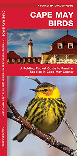 9781583553343: Cape May Birds: A Folding Pocket Guide to Familiar Species in Cape May County (A Pocket Naturalist Guide)