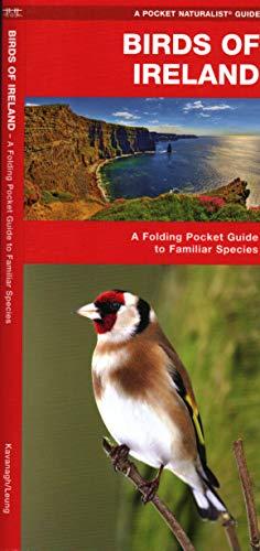 9781583553381: Ireland Birds: A Folding Pocket Guide to Familiar Species (A Pocket Naturalist Guide)