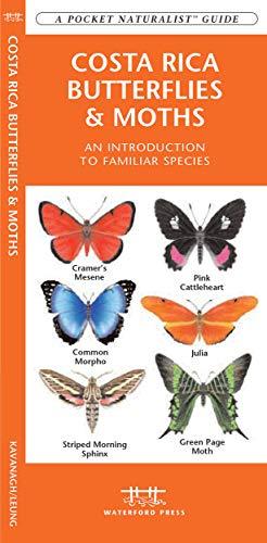 9781583553404: Costa Rica Butterflies & Moths: A Folding Pocket Guide to Familiar Species (A Pocket Naturalist Guide)