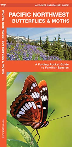 9781583553718: Pacific Northwest Butterflies & Moths: A Folding Pocket Guide to Familiar Species (A Pocket Naturalist Guide)