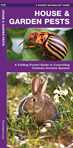 9781583554067: House & Garden Pests: How to Organically Control Common Invasive Species (A Pocket Naturalist Guide)