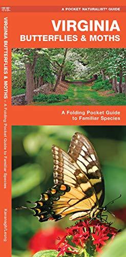 9781583554197: Virginia Butterflies & Moths: A Folding Pocket Guide to Familiar Species (A Pocket Naturalist Guide)