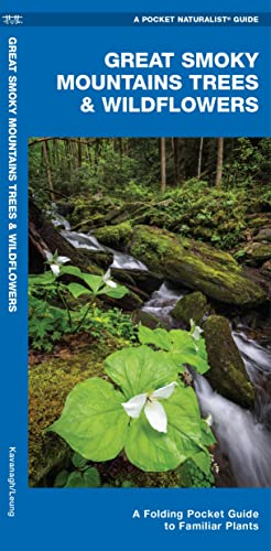 9781583554210: Great Smoky Mountains Trees & Wildflowers: A Folding Pocket Guide to Familiar Plants (A Pocket Naturalist Guide)