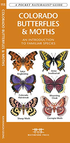 9781583554258: Colorado Butterflies & Moths: A Folding Pocket Guide to Familiar Species (A Pocket Naturalist Guide)