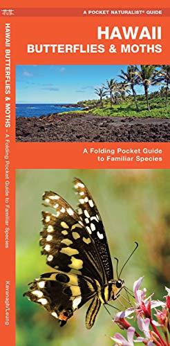 9781583554265: Hawaii Butterflies & Moths: A Folding Pocket Guide to Familiar Species (A Pocket Naturalist Guide)