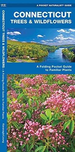9781583554449: Connecticut Trees & Wildflowers: A Folding Pocket Guide to Familiar Plants (A Pocket Naturalist Guide)