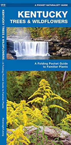 Kentucky Trees Wildflowers: A Folding Pocket Guide: James Kavanagh