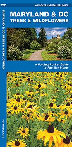 9781583554500: Maryland & DC Trees & Wildflowers: A Folding Pocket Guide to Familiar Species (A Pocket Naturalist Guide)