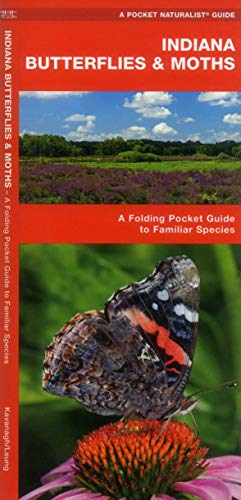 Indiana Butterflies & Moths: An Introduction to Familiar Species (Pocket Naturalist Guide ...