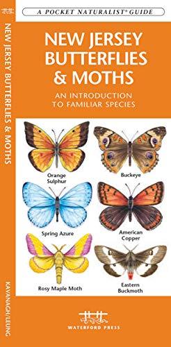 9781583554616: New Jersey Butterflies & Moths: A Folding Pocket Guide to Familiar Species (A Pocket Naturalist Guide)