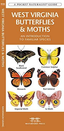 9781583554852: West Virginia Butterflies & Moths: A Folding Pocket Guide to Familiar Species (A Pocket Naturalist Guide)