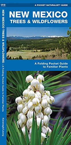 New Mexico Trees Wildflowers: A Folding Pocket: James Kavanagh