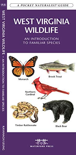 9781583555477: West Virginia Wildlife: An Introduction to Familiar Species (Wildlife and Nature Identification)