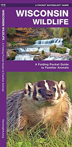 9781583556146: Wisconsin Wildlife: A Folding Pocket Guide to Familiar Animals (A Pocket Naturalist Guide)