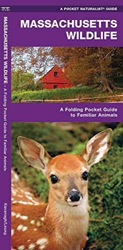 9781583556290: Massachusetts Wildlife: A Folding Pocket Guide to Familiar Species (A Pocket Naturalist Guide)
