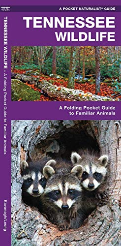 9781583556306: Tennessee Wildlife: A Folding Pocket Guide to Familiar Species (A Pocket Naturalist Guide)