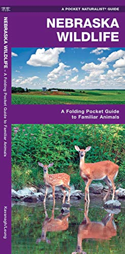 9781583556948: Nebraska Wildlife: A Folding Pocket Guide to Familiar Species (Pocket Naturalist Guide Series)