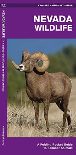 Nevada Wildlife: A Folding Pocket Guide to Familiar Species (Pocket Naturalist Guide Series): James...