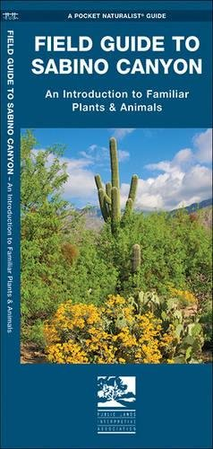 9781583557563: Field Guide to Sabino Canyon: An Introduction to Familiar Plants & Animals