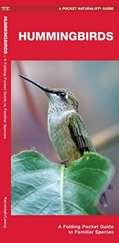 9781583557914: Hummingbirds: A Folding Pocket Guide to Familiar Species (A Pocket Naturalist Guide)