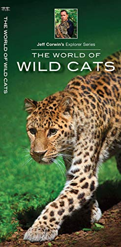 The World of Wild Cats (Jeff Corwin's Explorer Series)