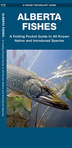 9781583558799: Alberta Fishes: A Folding Guide to All Known Native and Introduced Species (A Pocket Naturalist Guide)