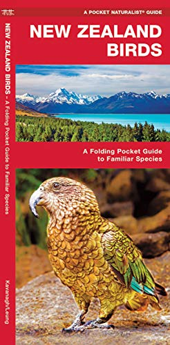 9781583558898: New Zealand Birds: A Folding Pocket Guide to Familiar Species