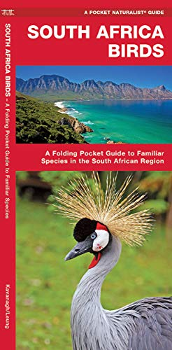 9781583559864: South Africa Birds: A Folding Pocket Guide to Familiar Species (A Pocket Naturalist Guide)