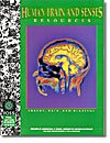 Human Brain and Senses Resources Images, Data,: FOSS