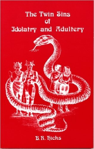 The Twin Sins of Idolatry and Adultery (1583631151) by B. R. HicksB. R. Hicks