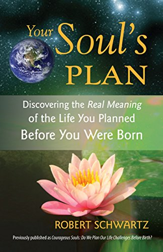 9781583942727: Your Soul's Plan: Discovering the Real Meaning of the Life You Planned Before You Were Born