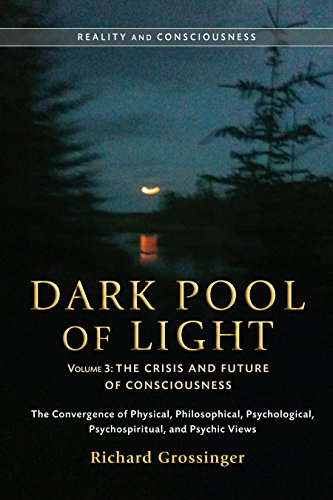 Dark Pool of Light, Volume Three: The Crisis and Future of Consciousness: 3 (Reality and ...
