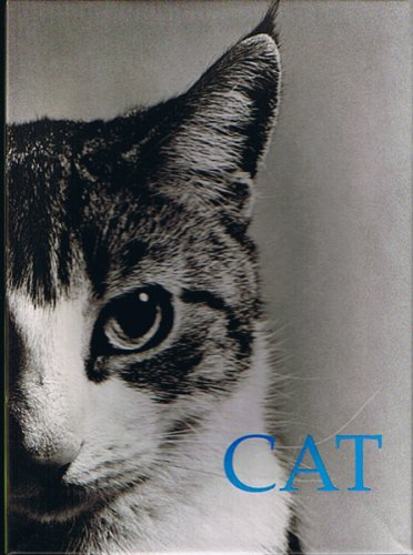 Cat. Box of 20 Notecards: various