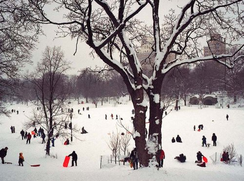 9781584181422: Fotofolio Holiday Boxed Cards, Prospect Park, New York, 2006