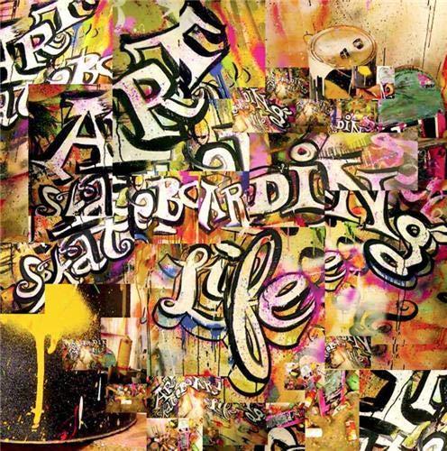 9781584232216: Art, Skateboarding and Life (Book & 2 DVDs)