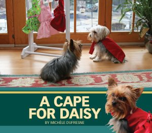 9781584535584: Cape for Daisy, A