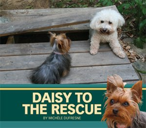 9781584535614: Daisy to the Rescue