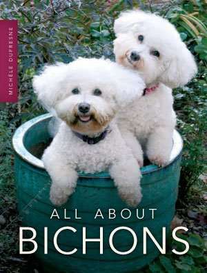 All About Bichons: Michele Dufresne