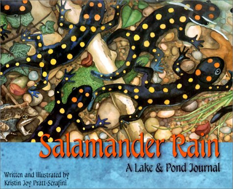 9781584690177: Salamander Rain: A Lake and Pond Journal (Sharing Nature With Children Book)