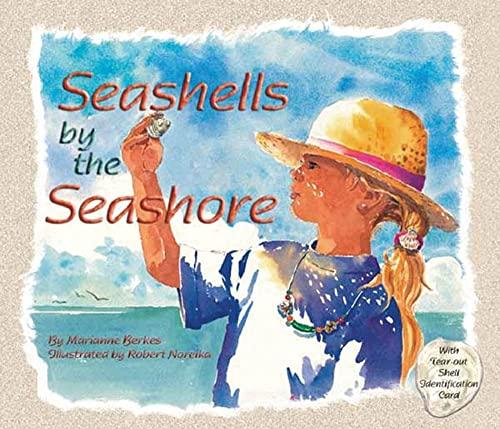 9781584690344: Seashells by the Seashore