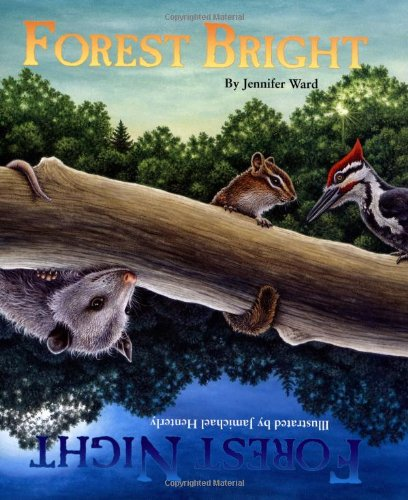 9781584690665: Forest Bright, Forest Night (Sharing Nature With Children Book)